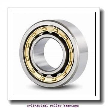 2.362 Inch | 60 Millimeter x 5.118 Inch | 130 Millimeter x 1.22 Inch | 31 Millimeter  CONSOLIDATED BEARING NUP-312  Cylindrical Roller Bearings