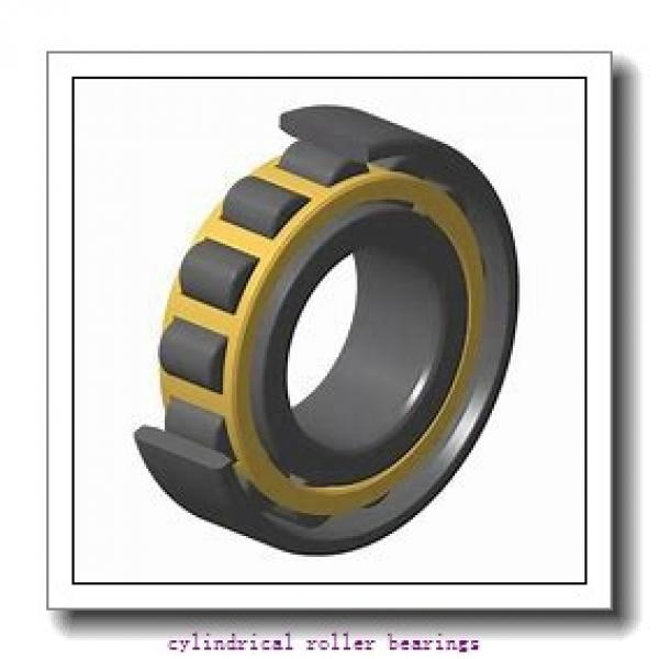 1.969 Inch | 50 Millimeter x 4.331 Inch | 110 Millimeter x 1.063 Inch | 27 Millimeter  CONSOLIDATED BEARING NUP-310E  Cylindrical Roller Bearings #1 image