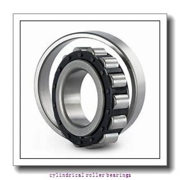 1.969 Inch | 50 Millimeter x 4.331 Inch | 110 Millimeter x 1.063 Inch | 27 Millimeter  CONSOLIDATED BEARING NUP-310E  Cylindrical Roller Bearings #2 image