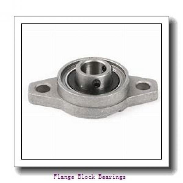 QM INDUSTRIES QMFX18J080SM  Flange Block Bearings #1 image
